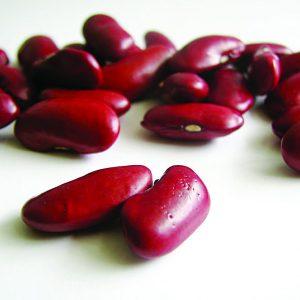 紅豆的介紹