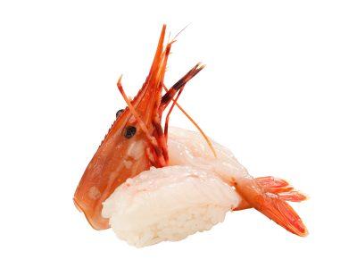 2017牡丹蝦